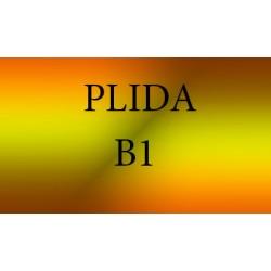 Сертификат Plida B1